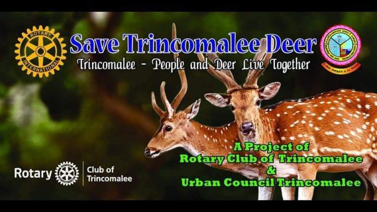 Save Trincomalee Deer_7